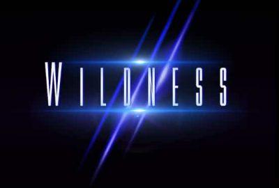 Wildness - Wildness