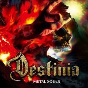 Nozomu Wakai's Destinia - Metal Souls